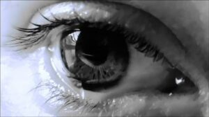 close-up image of an eye from Sara Clark's I See Nothing